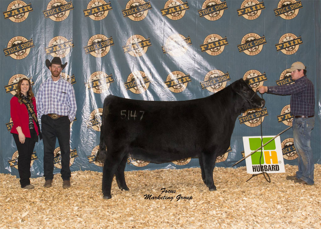 American Angus association Registration forms Awesome Angus Show and Sale