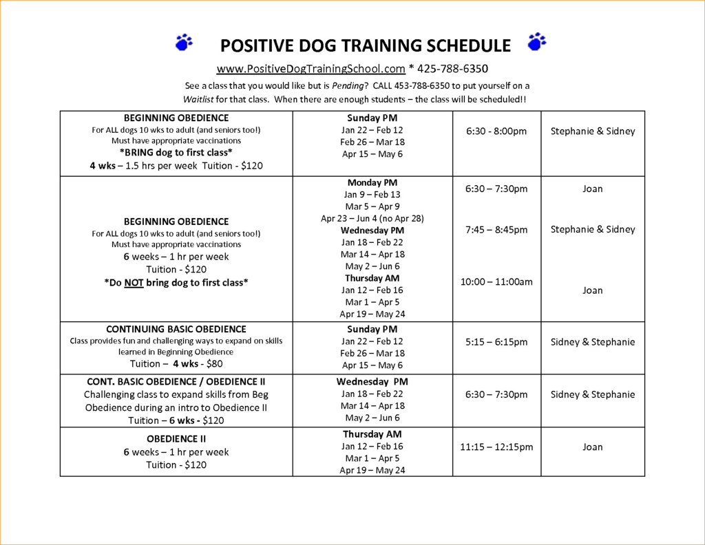 dog training plan template for your needs