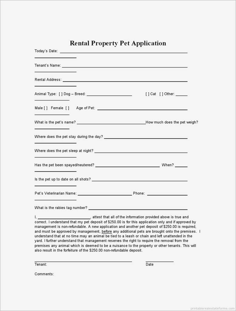 Rental Application form Ohio Awesome Simple Rental Application form Pdf Best Basic Rental Agreement