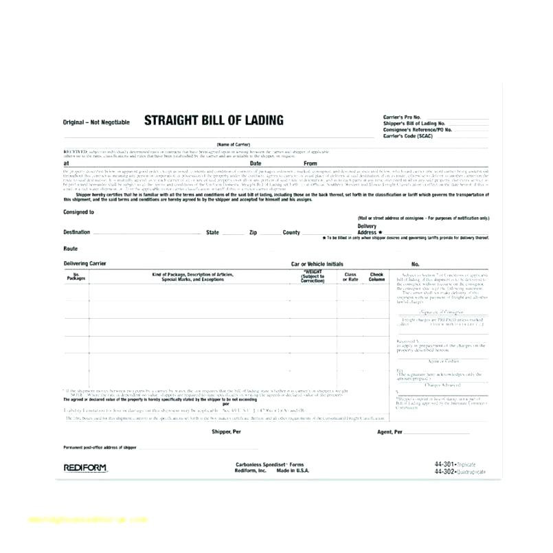 Bill Of Lading Example form Unique form Minimalist Template Bill Lading Free Snap A Line