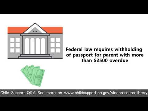 Arizona Child Support Termination forms Beautiful Video Resource Library