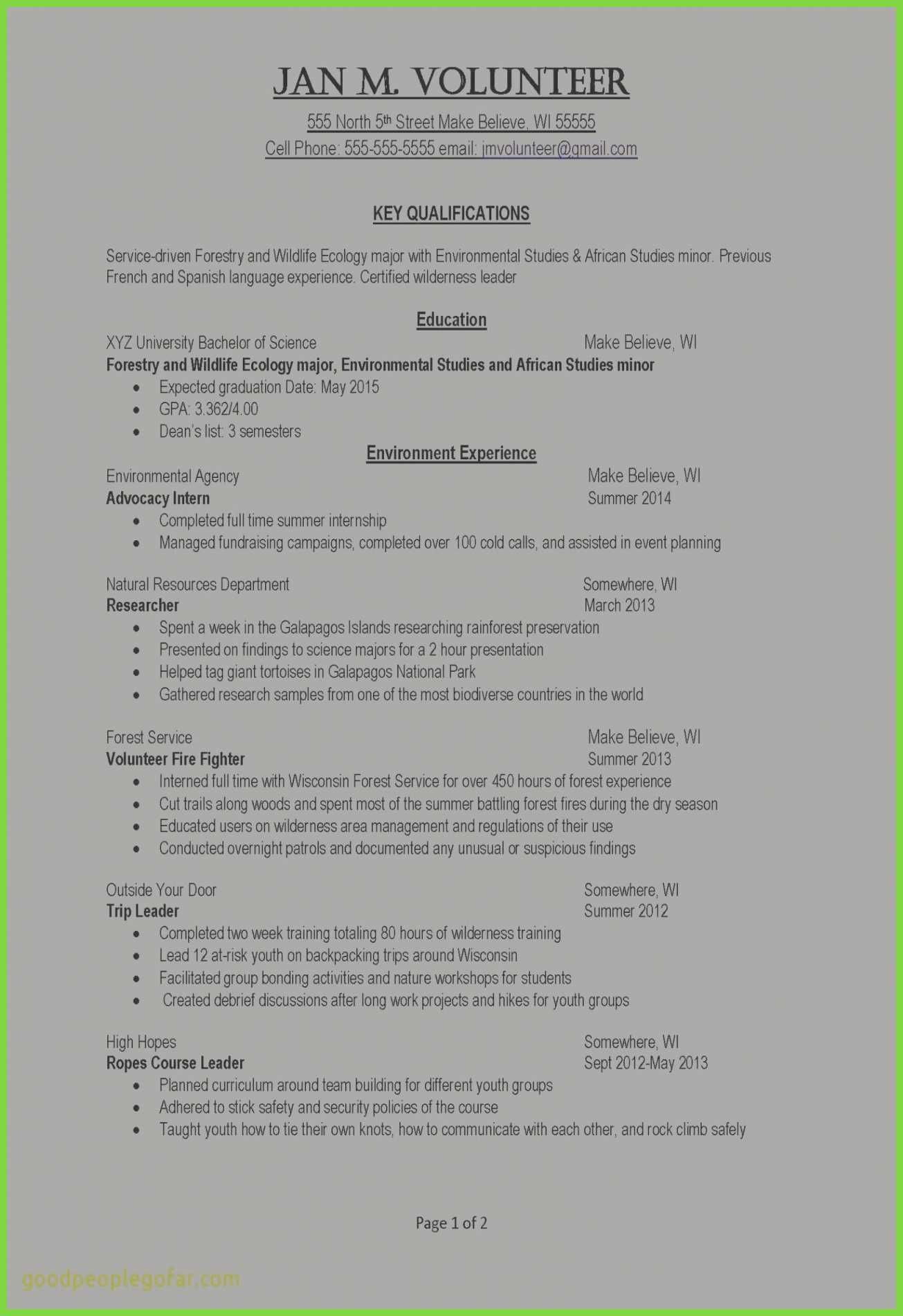 Fundraising Plan Template Cool Awesome Resume Examples Puter Science Example Job Resume
