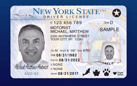 Military Drivers License form Excellent What is Real Id Enhanced Driver S License What You Need to