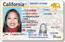 "Military Drivers License form New Roadshow Documents You Need to A ""real Id"""